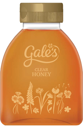 Clear Squeezy Honey 600g